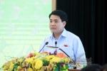 Chủ tịch Hà Nội: 'Di dời 1 cây xà cừ mất chục triệu, chưa biết trồng vào đâu'
