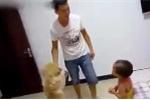 Phì cười clip chú chó ra sức bảo vệ em bé khỏi bị bố đánh mắng