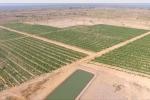 'Cuộc cách mạng' nông nghiệp công nghệ cao ở Ea Súp