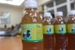 Sản xuất đồ uống chức năng từ cây diếp cá