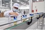 Chốt giá bán mỗi cổ phần Vinamilk ở mức 150.000 đồng, SCIC dự thu ít nhất 7.250 tỷ đồng