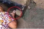 Clip: Người phụ nữ thò tay xuống cống, cứu bé sơ sinh còn nguyên dây rốn