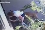 Video: Hai mẹ con bị cặp chó hung dữ tấn công