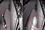Clip: Thanh niên đội mũ Grabbike luồn tay qua kẽ cửa trộm chim của nhà dân