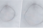 Clip: Vòng tròn đen bí ẩn nghi 'UFO' lơ lửng giữa trời Canada