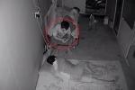2 thanh niên ngủ say, trộm ung dung ngồi trên giường 'nghịch' điện thoại