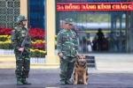 Video: Chó nghiệp vụ, máy soi an ninh được đưa đến ga Đồng Đăng trước hội nghị Mỹ - Triều