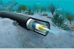 Liên tục đứt tuyến cáp quang biển quốc tế: Lãnh đạo VNPT nói gì?