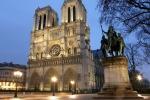 Nước Pháp sẽ cần tới 3.000 cây sồi kích thước lớn để phục dựng Nhà thờ Đức Bà