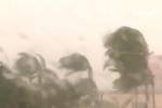 Lời tiên tri lạnh người về 'kỷ nguyên bão' của giáo sư Mỹ