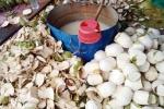 Rùng mình phát hiện hàng loạt dừa tươi bị tiêm thuốc
