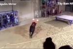 Clip: Bị đốt sừng, bò tót nổi điên húc tung cô gái