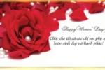 Lời chúc hay dành cho bạn bè trong ngày 8/3