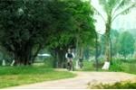 Sự thật về chất lượng không khí tại Ecopark