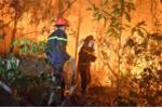 Cháy rừng ở Sóc Sơn Hà Nội: Công an vào cuộc điều tra