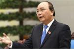 Thủ tướng chỉ đạo dừng ngay việc 'hình sự hóa' chủ quán phở chậm đăng ký kinh doanh