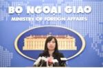 Việt Nam tích cực phối hợp với Nhật Bản điều tra vụ bé gái 9 tuổi bị sát hại