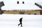 'Quái vật phương Đông' khiến châu Âu trong tuyết trắng