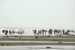 Bất chấp lệnh cấm, khách du lịch vẫn thản nhiên tắm biển giữa tâm bão