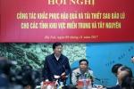 Phó Thủ tướng: 'Vùng bão lũ cần bao nhiêu gạo, xuất cấp bấy nhiêu'