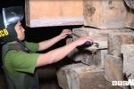 Mật phục bắt 5 xe công nông chở gỗ lậu: Chủ tịch tỉnh Đắk Lắk yêu cầu xử lý