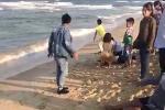 Tắm biển chiều mùng 4 Tết, 3 người chết, 1 người mất tích