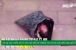 Bà mẹ Trung Quốc gói con mới đẻ vào túi nilon, chuyển phát nhanh đến trại trẻ mồ côi gây phẫn nộ