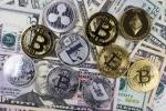 Gia Bitcoin hom nay 2/8: Lai tro ve nguong 7.500 USD hinh anh 1