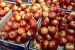 Táo Pháp rẻ như rau chợ, nhà giàu Việt sính ngoại ăn quả lừa