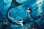 Nghi vấn mới về 'Nàng tiên cá' có thật trong lịch sử
