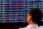Ôm cổ phiếu 'ông lớn', nhà đầu tư cháy tài khoản chỉ sau nửa năm