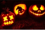 Vì sao Halloween có biểu tượng là quả bí ngô?