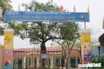 Đình chỉ thầy giáo bị tố dâm ô 13 nữ sinh lớp 5 ở Bắc Giang