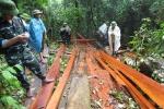 Phó Chủ tịch huyện ở Quảng Bình bị kỷ luật vì để rừng phòng hộ bị 'xẻ thịt'