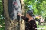 Ảnh: Ba cây sưa trăm tuổi trị giá hàng chục tỷ đồng, dân thay nhau trông giữ ngày đêm ở Hà Nội