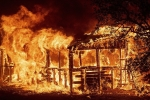 Video, ảnh: Biển lửa bao trùm California như ngày tận thế, hàng chục nghìn người phải sơ tán