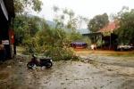 Lốc xoáy thổi bay 50 nóc nhà ở huyện miền núi Nghệ An