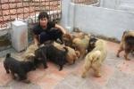 Ngao Tay Tang: Thu hoang giet nguoi, 'than khuyen' trieu USD hinh anh 4