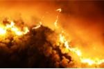 Cháy rừng lịch sử Hà Tĩnh: Đau đớn nhìn rừng thông gần 50 năm tuổi chìm trong biển lửa