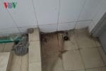 Gần nghìn học sinh nhưng trường ở Hà Nội chỉ có 2 nhà vệ sinh