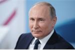 Ông Putin chiến thắng áp đảo, tái đắc cử Tổng thống Nga sau kiểm phiếu sơ bộ
