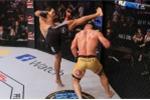 Video võ sĩ MMA bị hạ knock-out bởi đòn cực hiểm