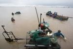 Tròn mắt xem nông dân Thái Bình dùng máy hút, 2 giờ thu được gần 20 tấn ngao
