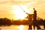 Video: Xem hàng trăm cần thủ câu cá trên dòng sông lũ ở Hà Nội