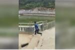 Video: Đẩy khỉ xuống ao, du khách bị con vật quay lại trả thù đau đớn