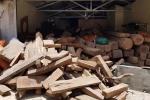 Thu giữ 25m3 gỗ tại nhà trùm ma túy Nguyễn Thanh Tuân: Kiểm lâm nói gì?