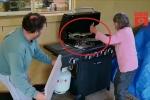 Clip: Cụ bà 81 tuổi tay không bắt 2 con trăn trong lò nướng