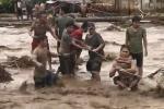 Đi neo thuyền chống bão, người đàn ông Philippines bị cá sấu ăn thịt