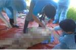 Khai quật tử thi nữ kế toán bệnh viện ở Nghệ An: Còn nguyên vẹn sau 6 năm chôn cất