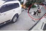 Clip: Bé gái 8 tuổi bạo gan đối đầu 4 tên cướp có súng